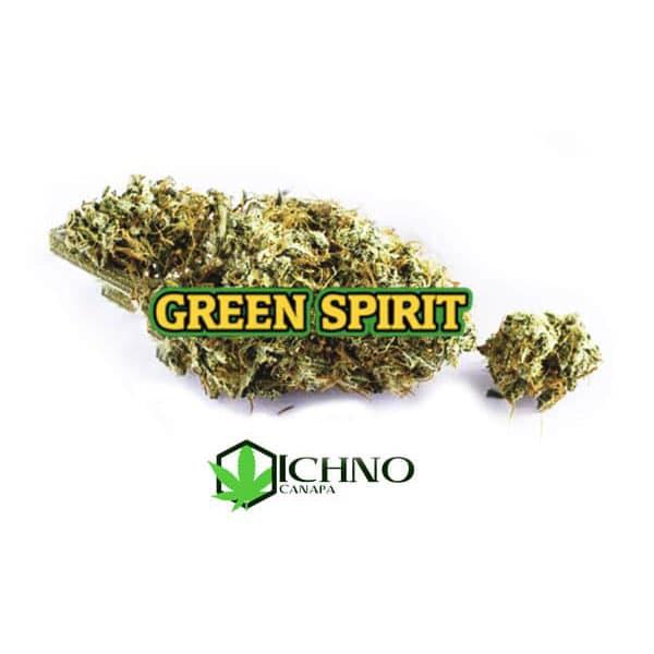 green-spirit-22