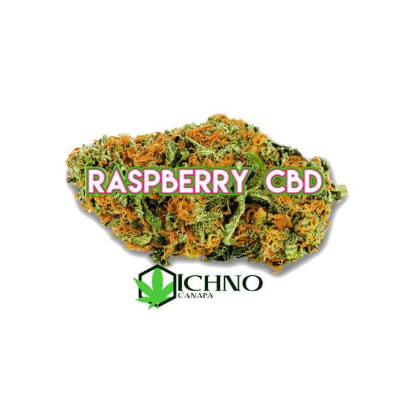 raspberry-cbd-22