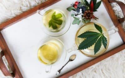 Tutto quello che c'è da sapere sulla Cannabis Legale